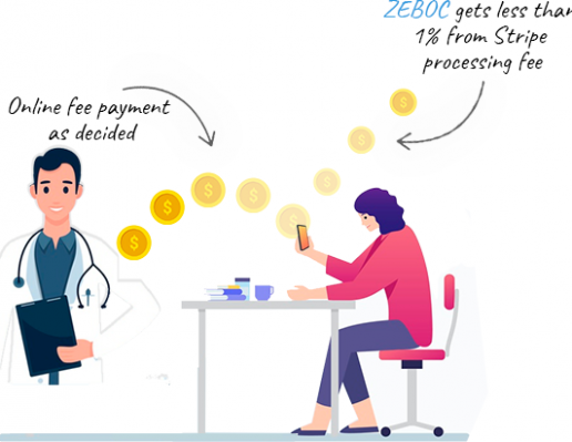 how-zeboc-makes-money